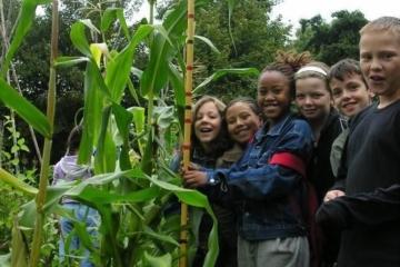 Lekker naar buiten met kinderen? Schooltuin Stevenshof zoekt vrijwilligers!
