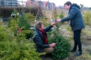 2016  –  Kerstbomenasiel opent weer in januari