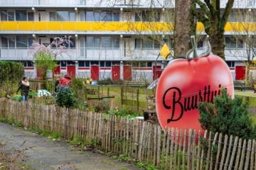 20 – 21 juni: doe mee met de Open Buurttuinendagen van Groen Dichterbij Leiden